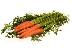 Моркови с листьями Стоковые Фото
