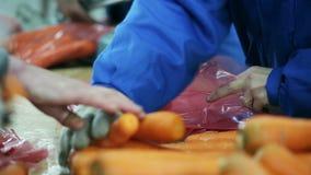 Моркови упаковки в пакетах для перепродажи акции видеоматериалы