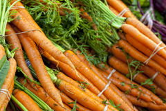Моркови фермы свежие Стоковое Изображение RF
