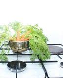 моркови Стоковые Фотографии RF