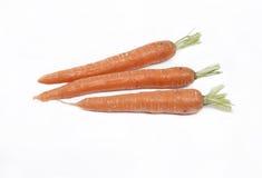 моркови 3 Стоковое Фото