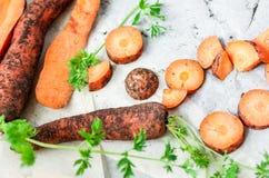 Моркови Стоковое фото RF