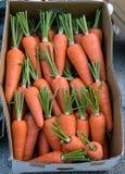 Морковь в бумажной коробке на рынке Стоковая Фотография RF