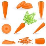 Морковь значка установленная Стоковые Фото
