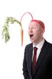 Морковь мотивировки Стоковые Изображения