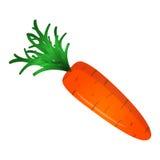 Морковь на белой предпосылке Стоковые Изображения RF