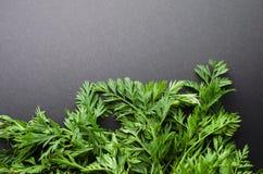 Морковь покидает предпосылка Стоковые Фото