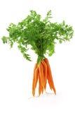 морковь свежая Стоковые Фото