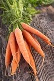 морковь свежая Стоковые Фотографии RF