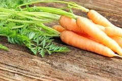 морковь свежая стоковое фото