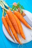 морковь сырцовая стоковые фото