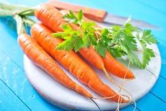 морковь сырцовая стоковые изображения