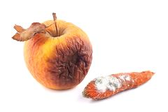 Морковь Яблока тухлая и moldy Стоковая Фотография