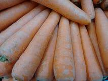 морковь Стоковые Фотографии RF