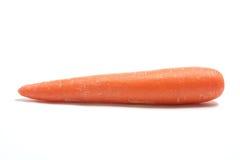 морковь Стоковое Изображение