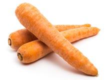Морковь 3 Стоковые Фотографии RF
