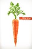 морковь Vegetable значок вектора Стоковое Изображение