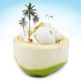 Мороженое в кокосе Стоковое фото RF