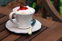Мороженое в чашке Стоковые Фотографии RF