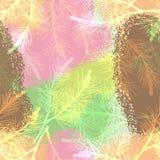 Мороженое камуфлирования картины ветви сосны безшовное Стоковое Изображение RF