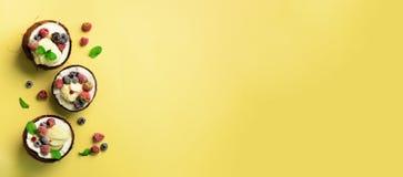 Мороженое кокоса с свежими ягодами в половинах кокосов на желтой предпосылке с космосом экземпляра знамена Взгляд сверху Искусств стоковое изображение