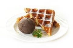 Мороженое с waffle Стоковая Фотография RF
