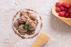 Мороженое шоколада с полениками Стоковое Изображение