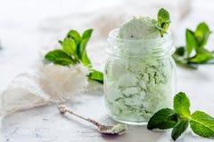 Мороженое Mojito в стеклянном опарнике Стоковые Изображения