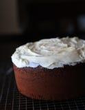 Морозить торт Стоковые Фото
