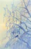 Морозная акварель березы Стоковое Изображение RF
