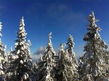 Морозная гора стоковые изображения rf