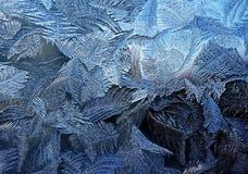 Морозная естественная картина на зиме Стоковые Фотографии RF