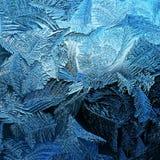 Морозная естественная картина на зиме Стоковая Фотография