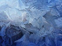 Морозная естественная картина на зиме Стоковое Фото