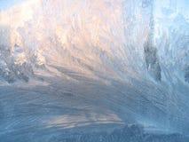 морозная естественная картина Стоковая Фотография