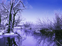 морозная зима наступления ночи Стоковое Изображение RF
