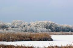 морозная зима реки стоковые фотографии rf