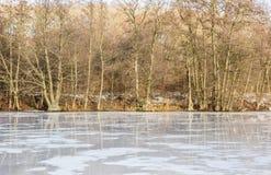 морозная зима снежностей природы утра стоковое изображение