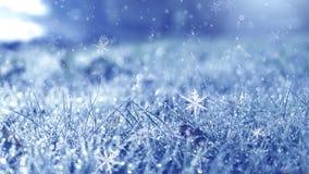 морозная зима утра Предпосылка снега зимы, голубой цвет, снежинки, солнечный свет, макрос бесплатная иллюстрация