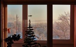 морозная зима утра Стоковая Фотография RF