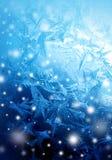 Морозная картина зимы с снегом Стоковое Изображение RF