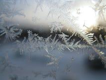 Морозная картина на окне зимы Стоковые Изображения RF