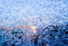 Морозная точная картина природы Стоковые Фотографии RF