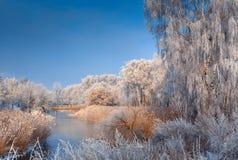 Морозное туманное утро на rive Стоковая Фотография