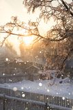 Морозное утро в деревне Стоковое Фото