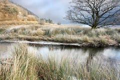 Морозное утро зимы на резервуаре Talybont Стоковые Фото