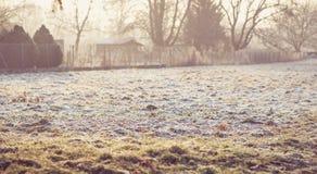 Морозное утро на farm2 Стоковое фото RF