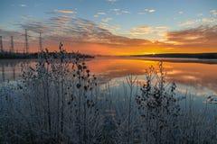 Морозное утро озером Стоковые Фотографии RF
