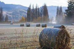 Морозное утро фермы Стоковая Фотография