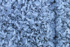 морозно Стоковое Изображение RF